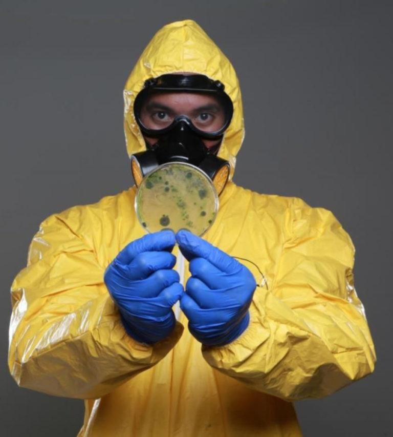 Обработка от вирусов и инфекций